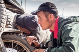 Unsere Motorräder werden gerne inspiziert und angefasst.